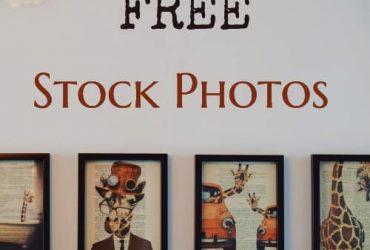 free-stock-photos
